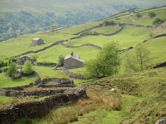 Swaledale in June